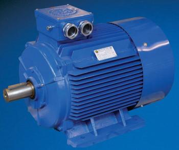 Hoyer Atex Zone 22 Electric Motors